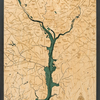 "Washington, DC Wood Carving 24.5""W x 31""L"