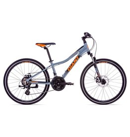 Giant 2019 XTC Jr 1 Disc, 24 Inch