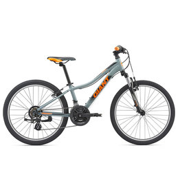 Giant 2019 XTC Jr 1, 24 Inch
