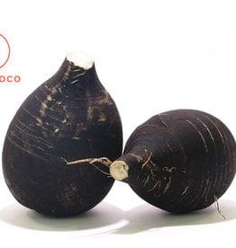 BocoBoco - maître fruitier Radis noir biologique du Québec (environ 1 livre)