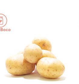Les Jardins de Stéphanie Patate grelot blanc (1 kg)