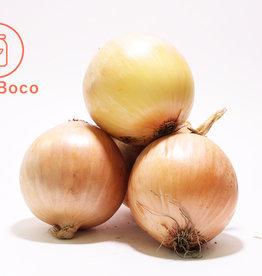 BocoBoco - maître fruitier Oignons jaunes biologiques du Québec (3lbs - 1,36kg)