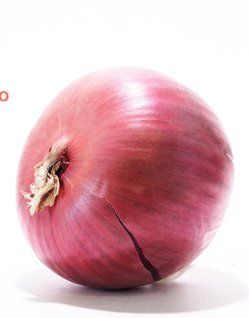 Les Jardins de Stéphanie Oignon rouge large (200-250gr)