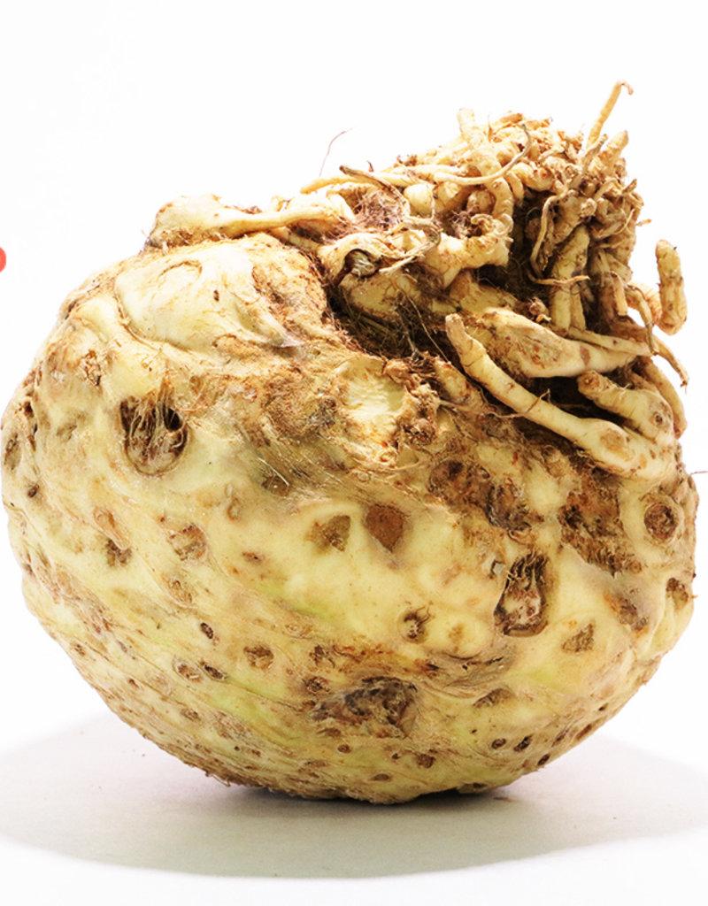 BocoBoco - maître fruitier Céleri rave moyen biologique du Québec