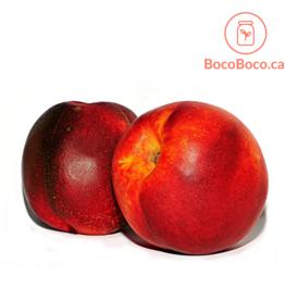 Distributeurs de fruits Nectarine biologique (lot de 3)