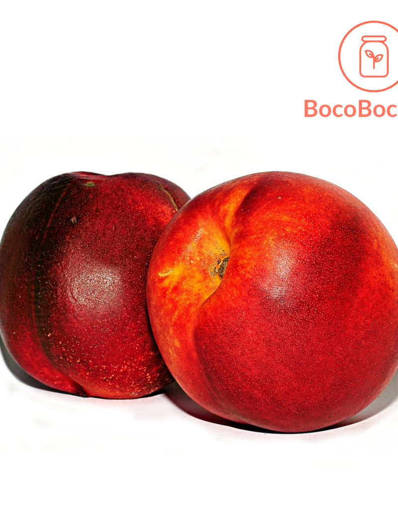 BocoBoco - maître fruitier Nectarine biologique (lot de 3)