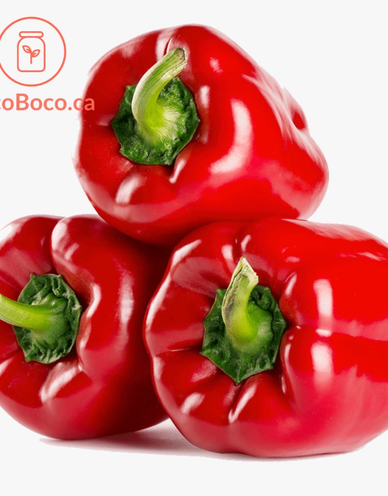 Distributeurs de fruits Poivron rouge biologique  - Québec (à l'unité)