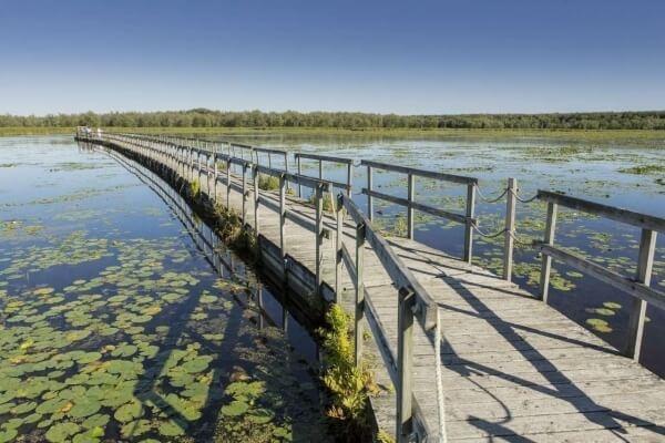 BocoBoco recommande le parc national d'Oka