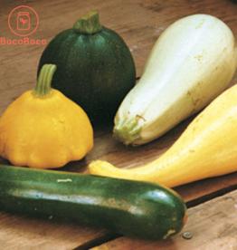Les Jardins de Stéphanie Courgette d'été mélange (700gr)