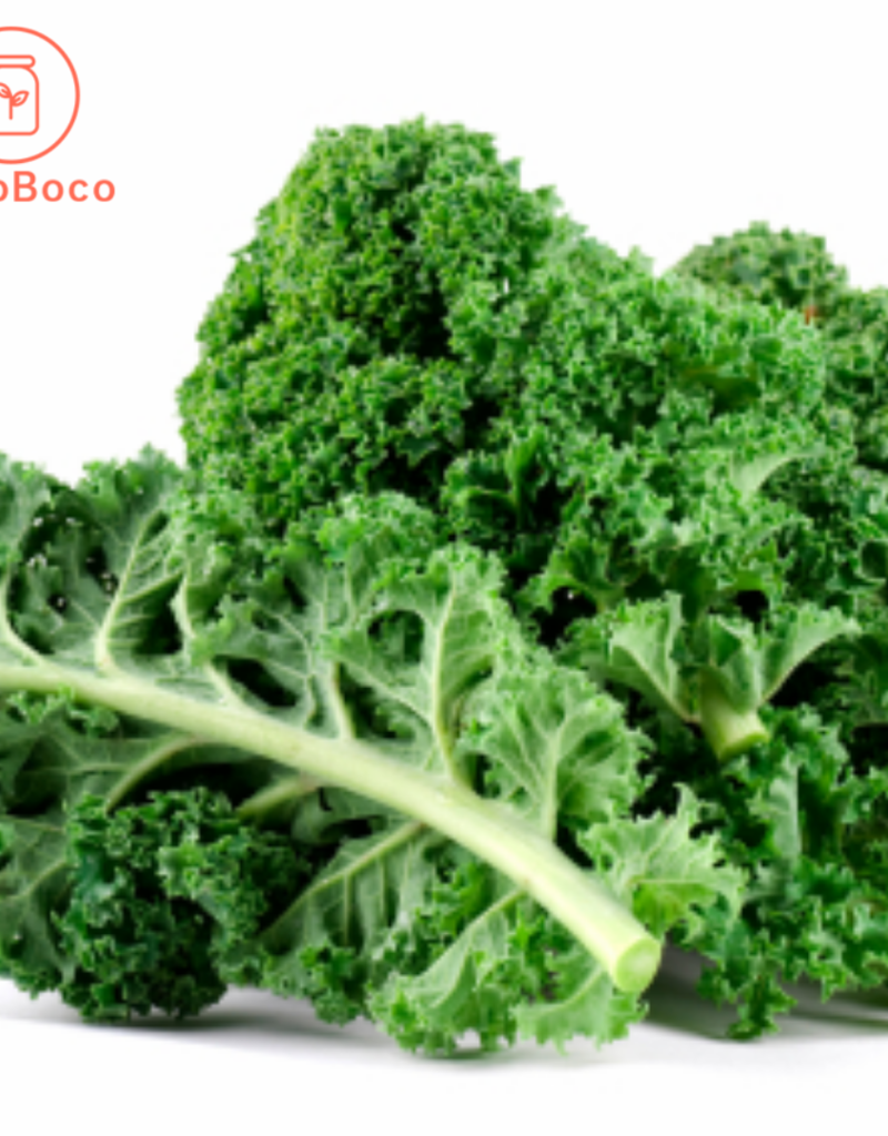 BocoBoco - maître fruitier Kale vert biologique du Québec