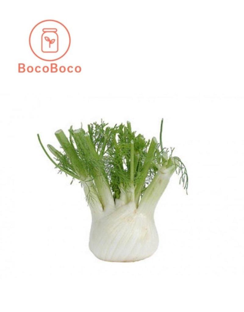 BocoBoco - maître fruitier Fenouil biologique