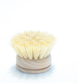 Brosse vaisselle bois/tampico - recharge