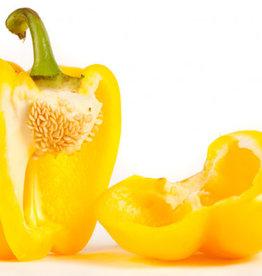 BocoBoco - maître fruitier Poivron jaune ou orange - Biologique du Québec (à l'unité)