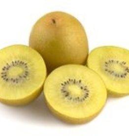 BocoBoco - maître fruitier Gros Kiwis Sungold  - Biologiques (lot de 3)