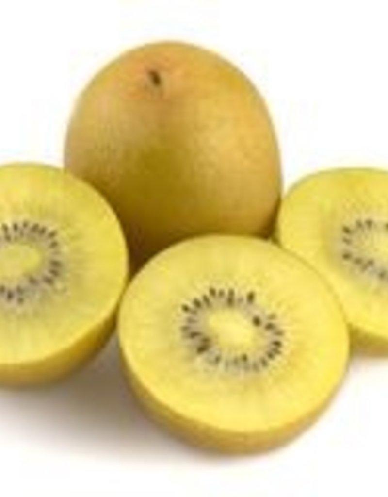 BocoBoco - maître fruitier Gros Kiwis Sungold - Biologiques (lot de 3 )