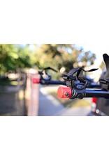 Allen 4 vélos – 542RR Deluxe sur attelage