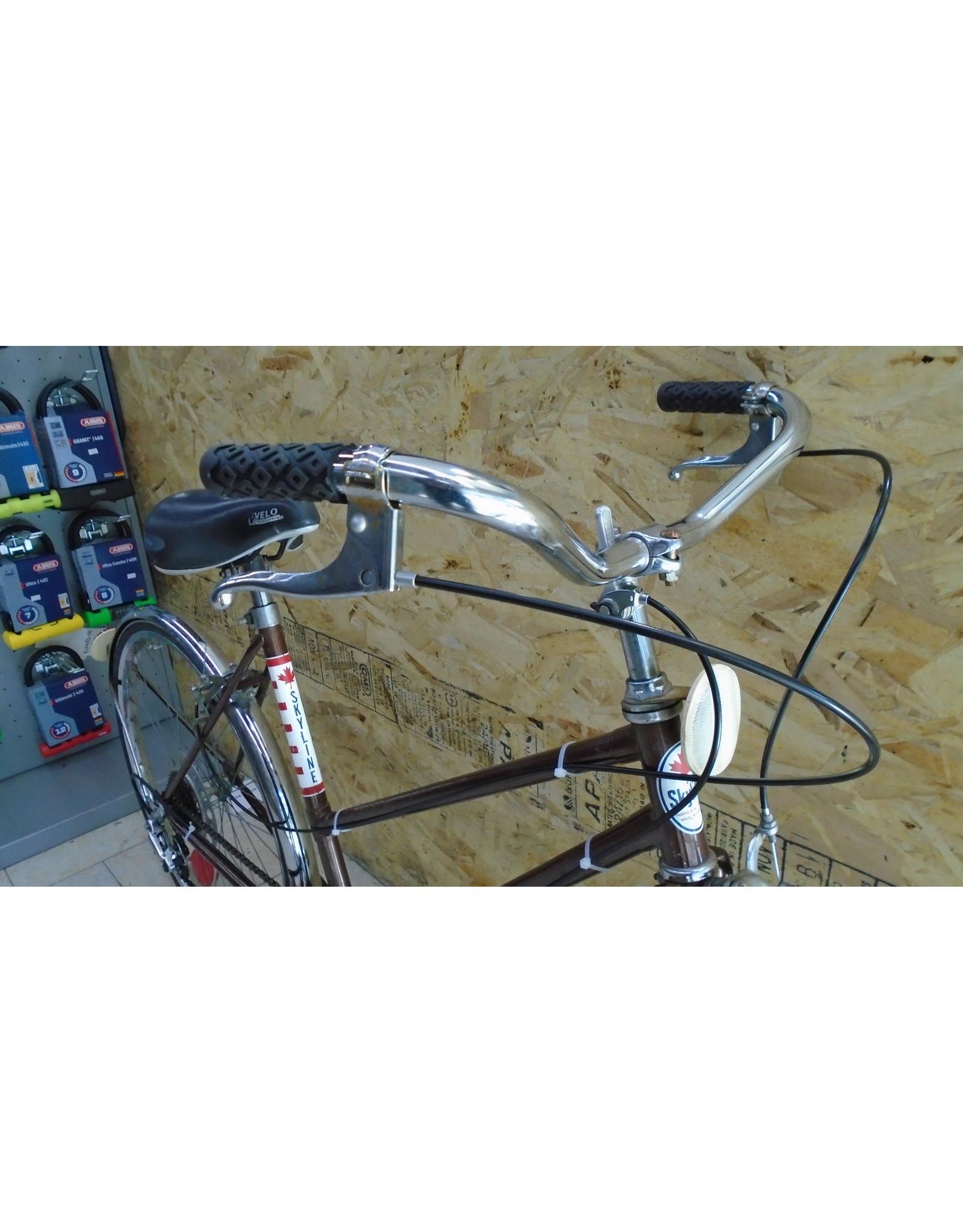 """Used Skyline 19 """"city bike - 10210"""