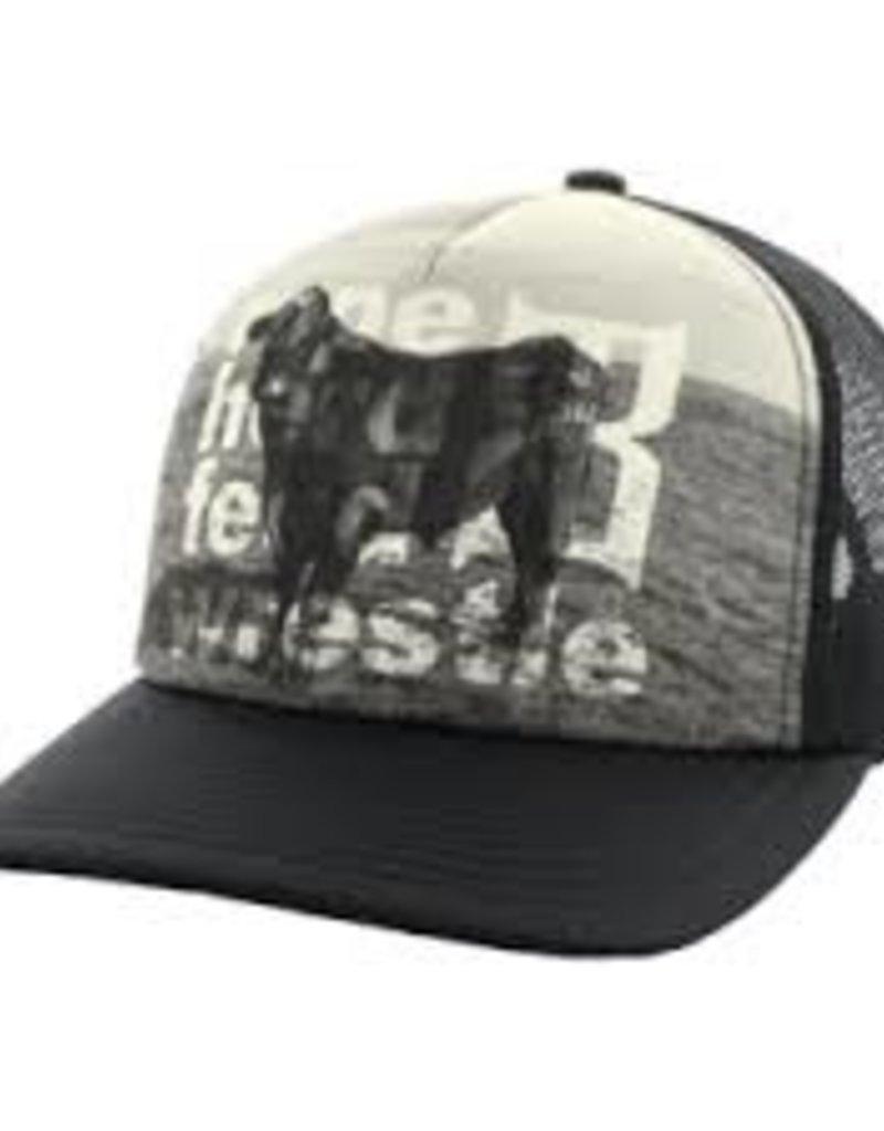 Bex Sunglasses Hyde Black Cap