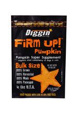 Diggin Diggin Pumpkin Supplement 16oz