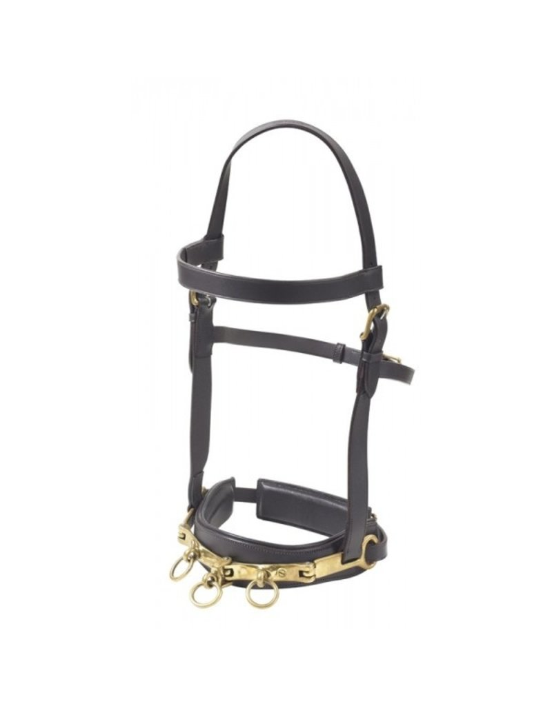 Camelot Full Camelot Leather Lunging Caveson Brown