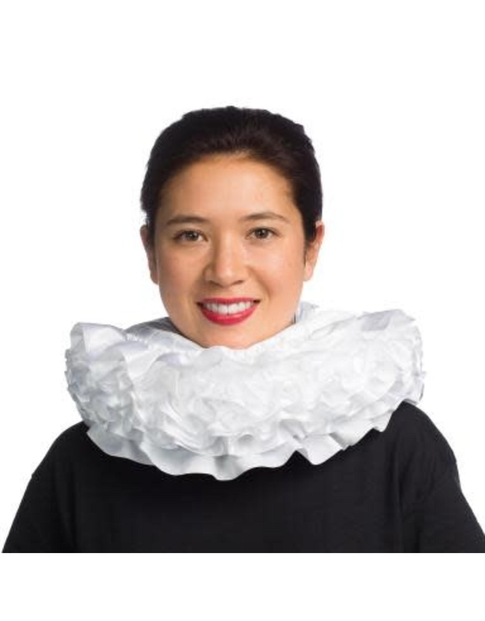 HM Smallwares Elizabethan Collar