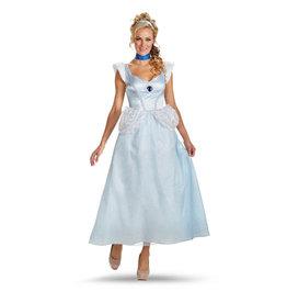 Disguise Cinderella