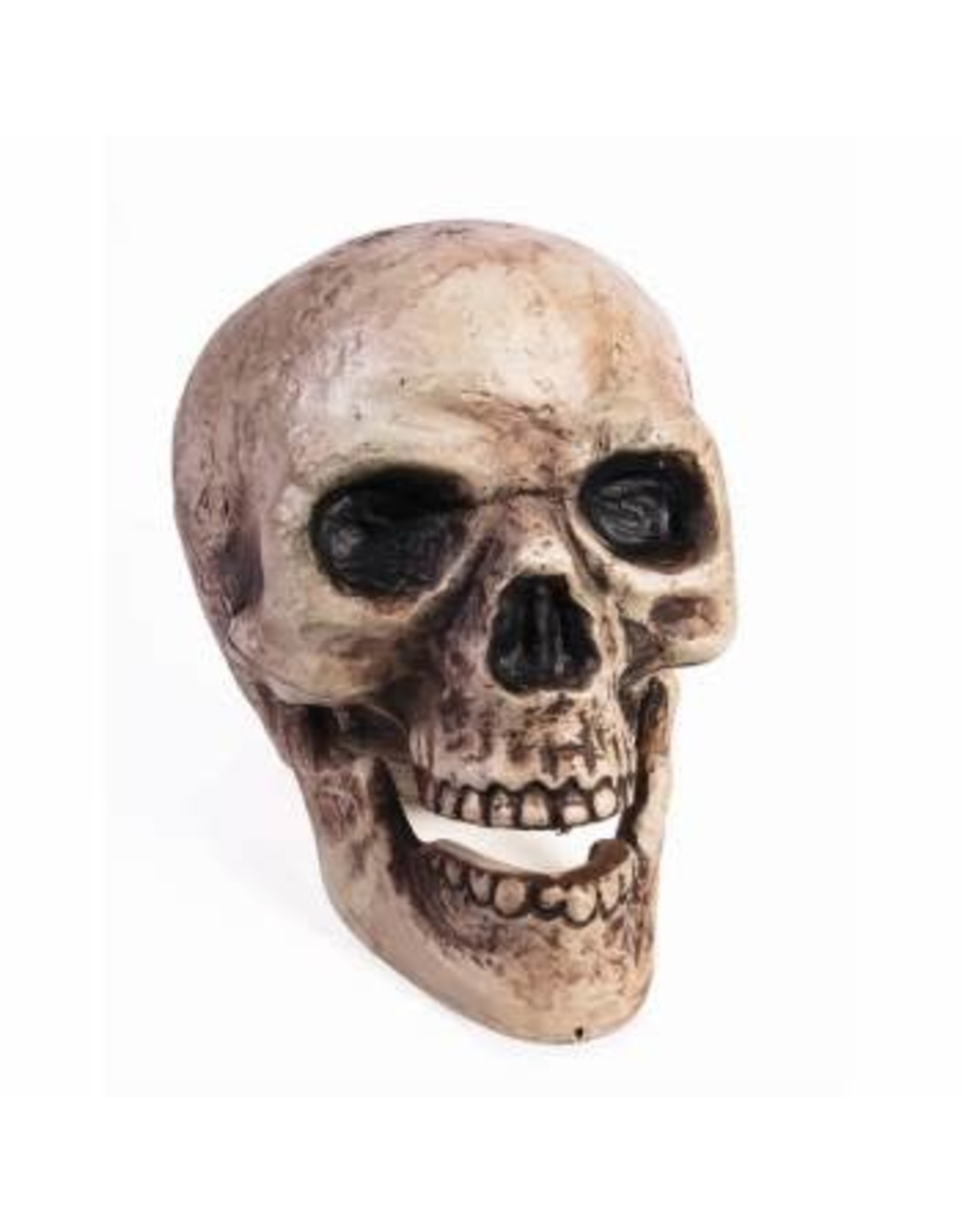 Forum Novelties Inc. Skull with Moving Jaw