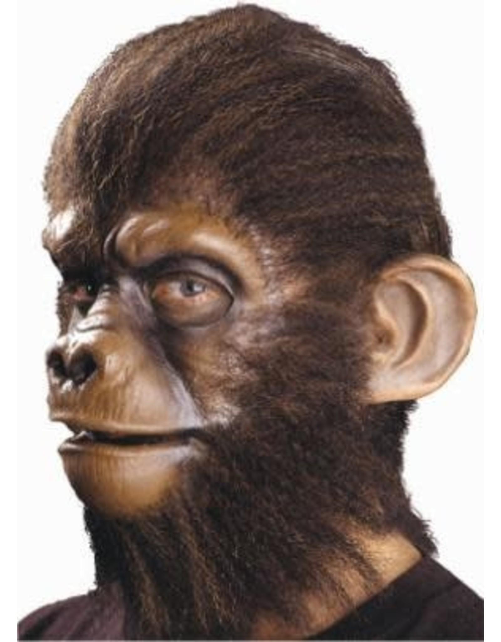 Cinema Secrets Monkey Ears