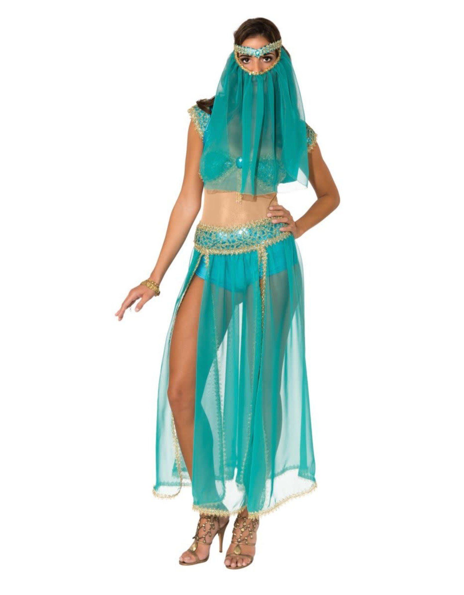 Rubies Costume Harem Princess