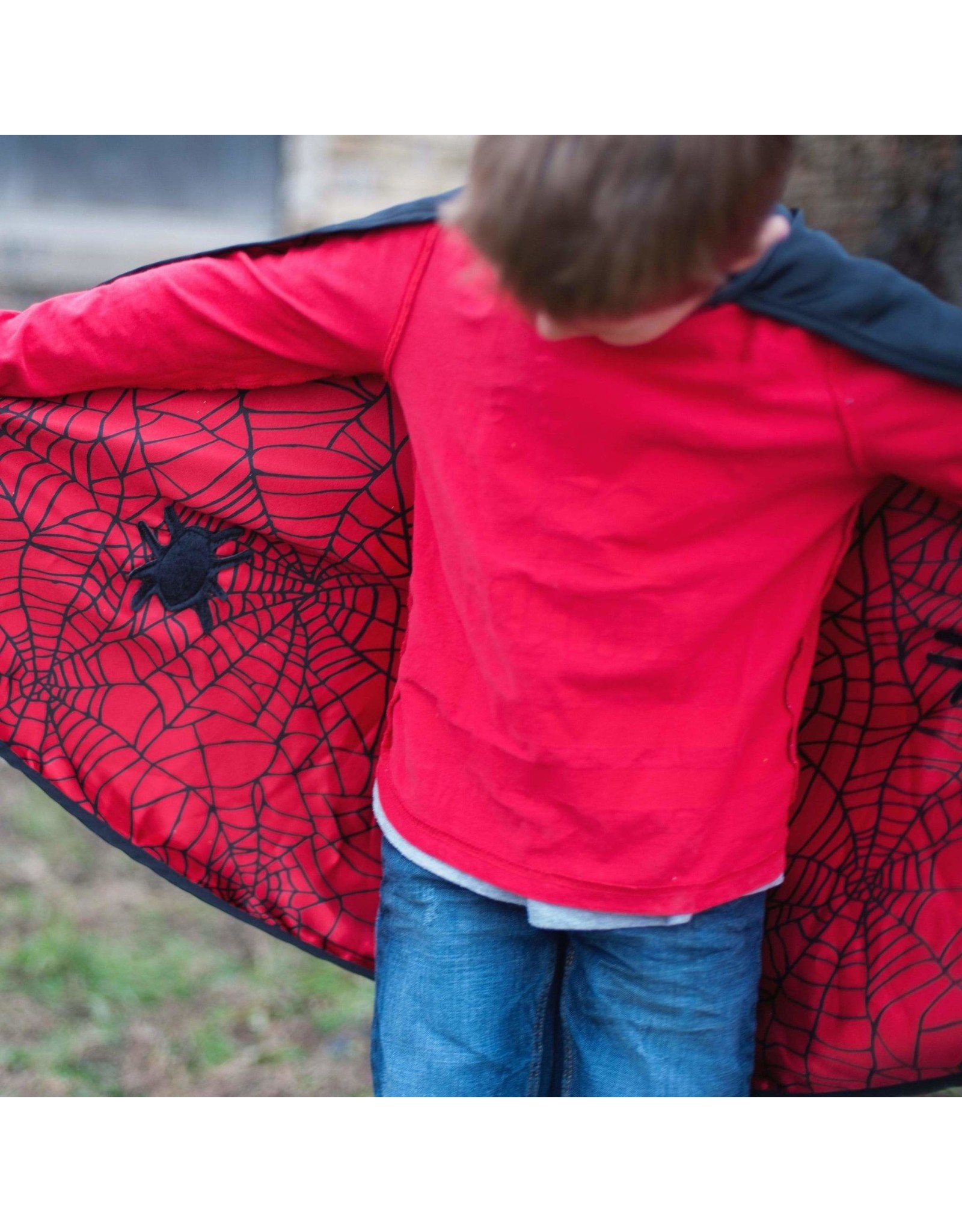 Great Pretenders Reversible Spider/Bat Cape and Mask