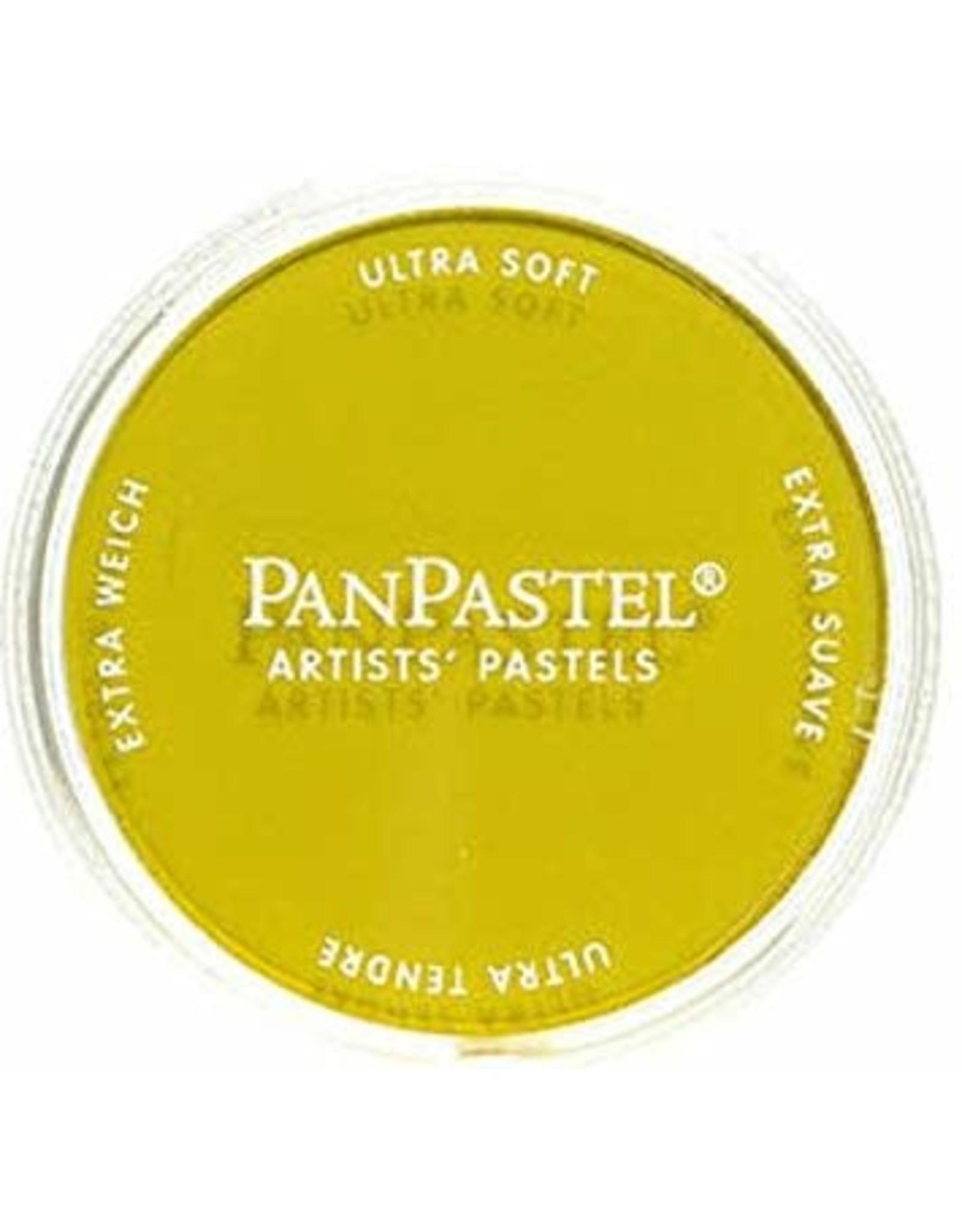 Colorfin LLC Diarylide Yellow - PanPastel