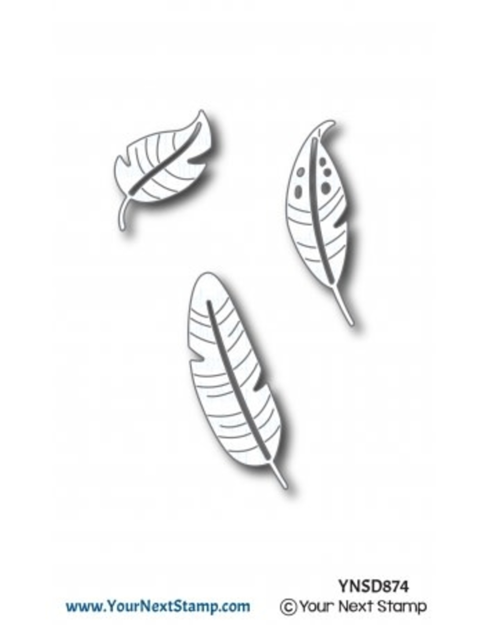 Your Next Stamp Feather Fun - Die Set