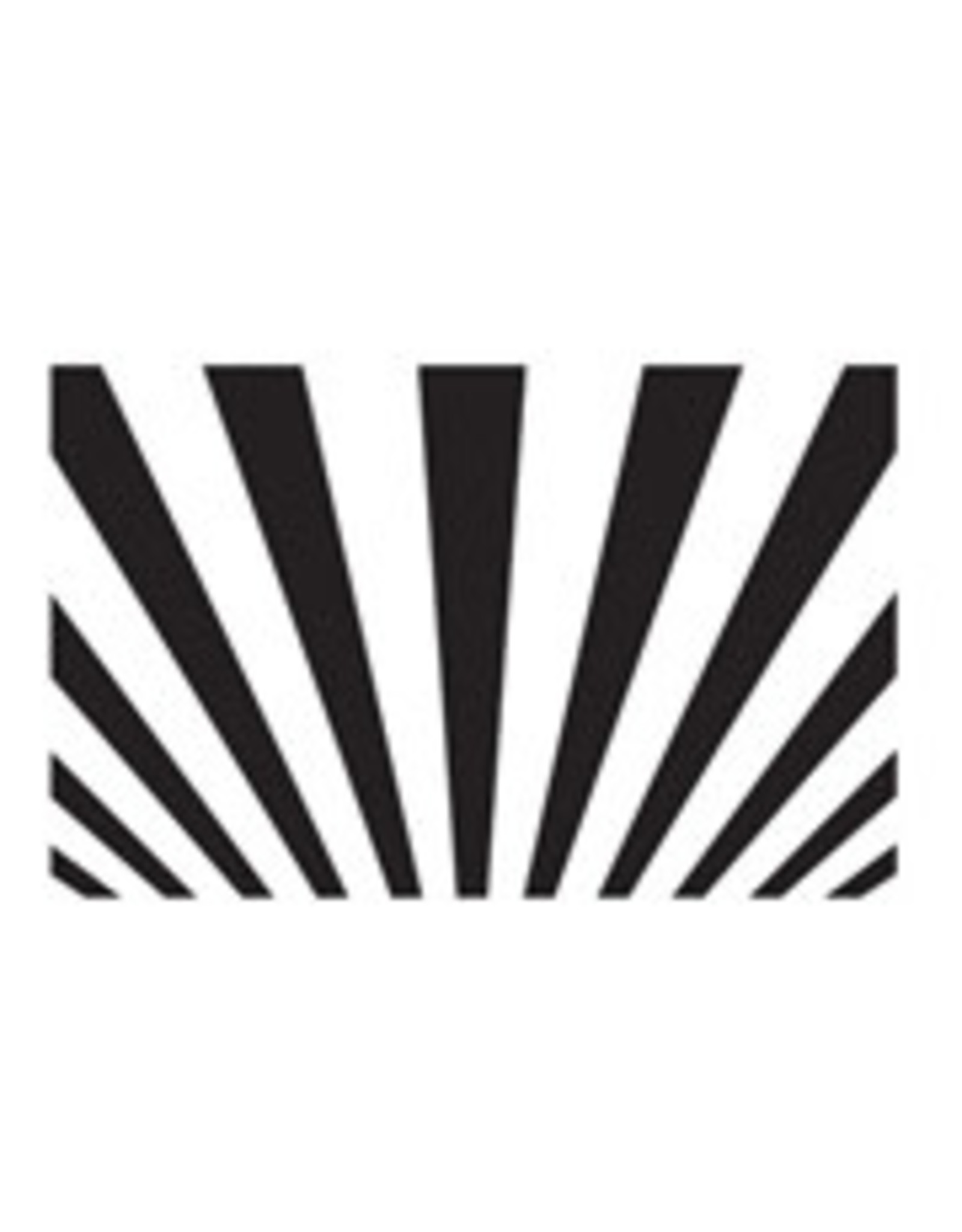 Sun Rays Background - Embossing Folder