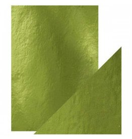 Tonic Studio Holly Green - A4 Mirror Card High Gloss