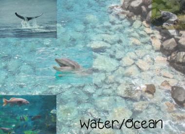 Water/Ocean