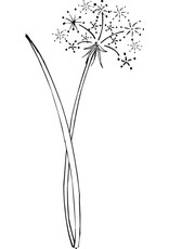 DRS Designs Dandelion Puff Cling Stamp