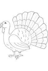 DRS Designs Classic Turkey Cling Stamp