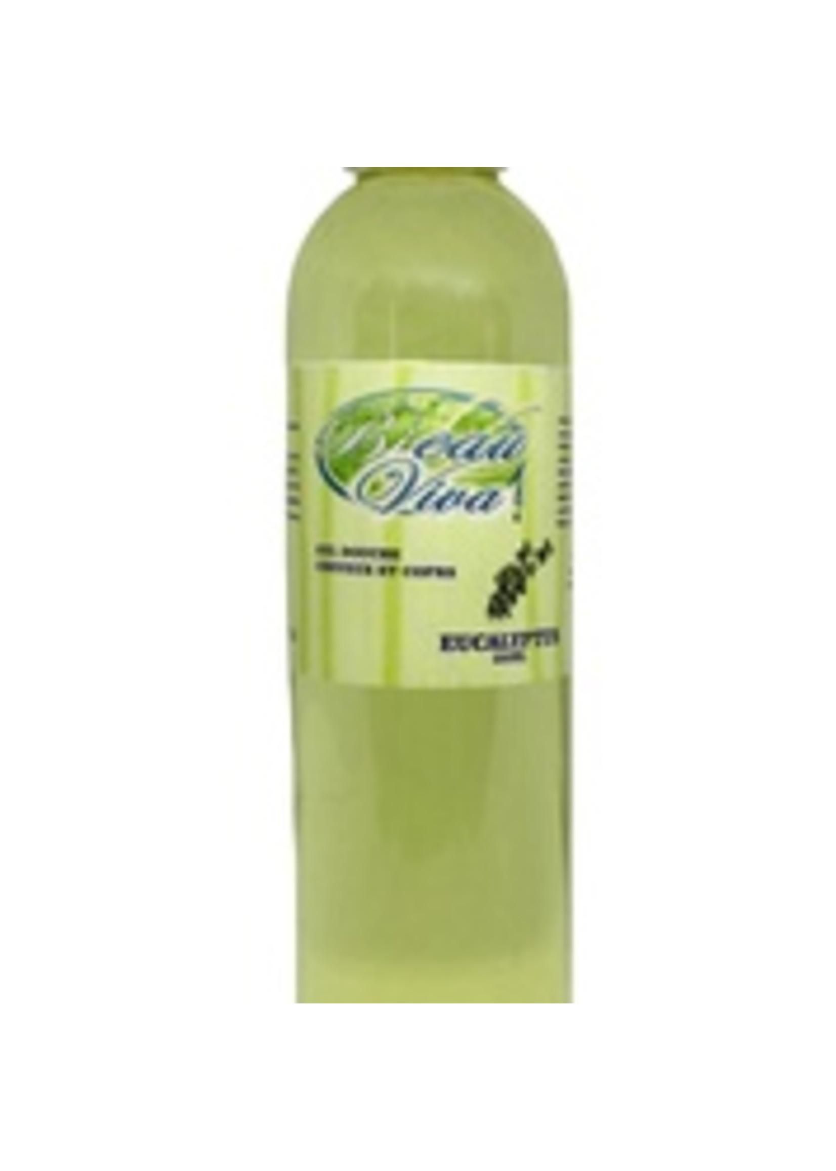 Bieau Viva Gel douche corps et cheveux eucalyptus 250 ml, Lab. Héloïse