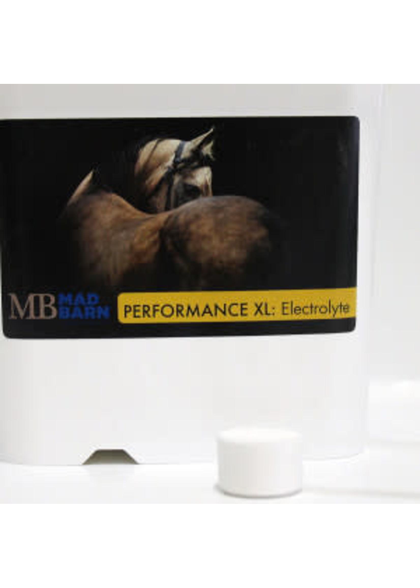 Mad Barn Performance XL Electrolyte 5 kg Mad barn