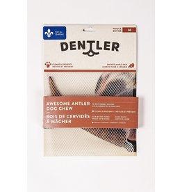 dentler Dentler bois cervidés entiers jambon érablemoyen