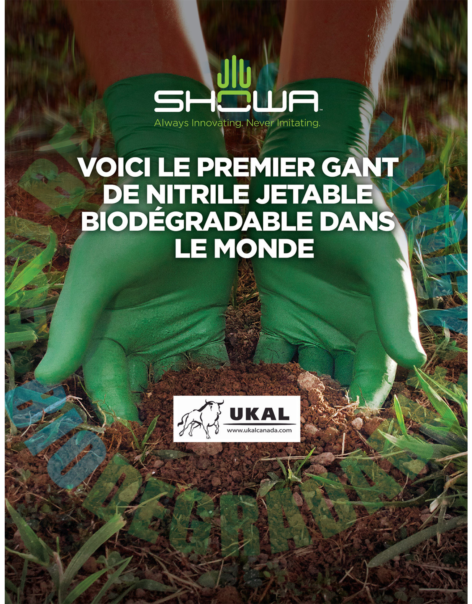 Showa Gants Biodégradables vert 4 mil large