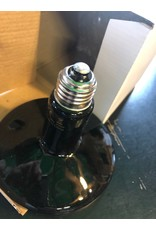Ma poule express Ampoule en céramique géante 250 w, PE