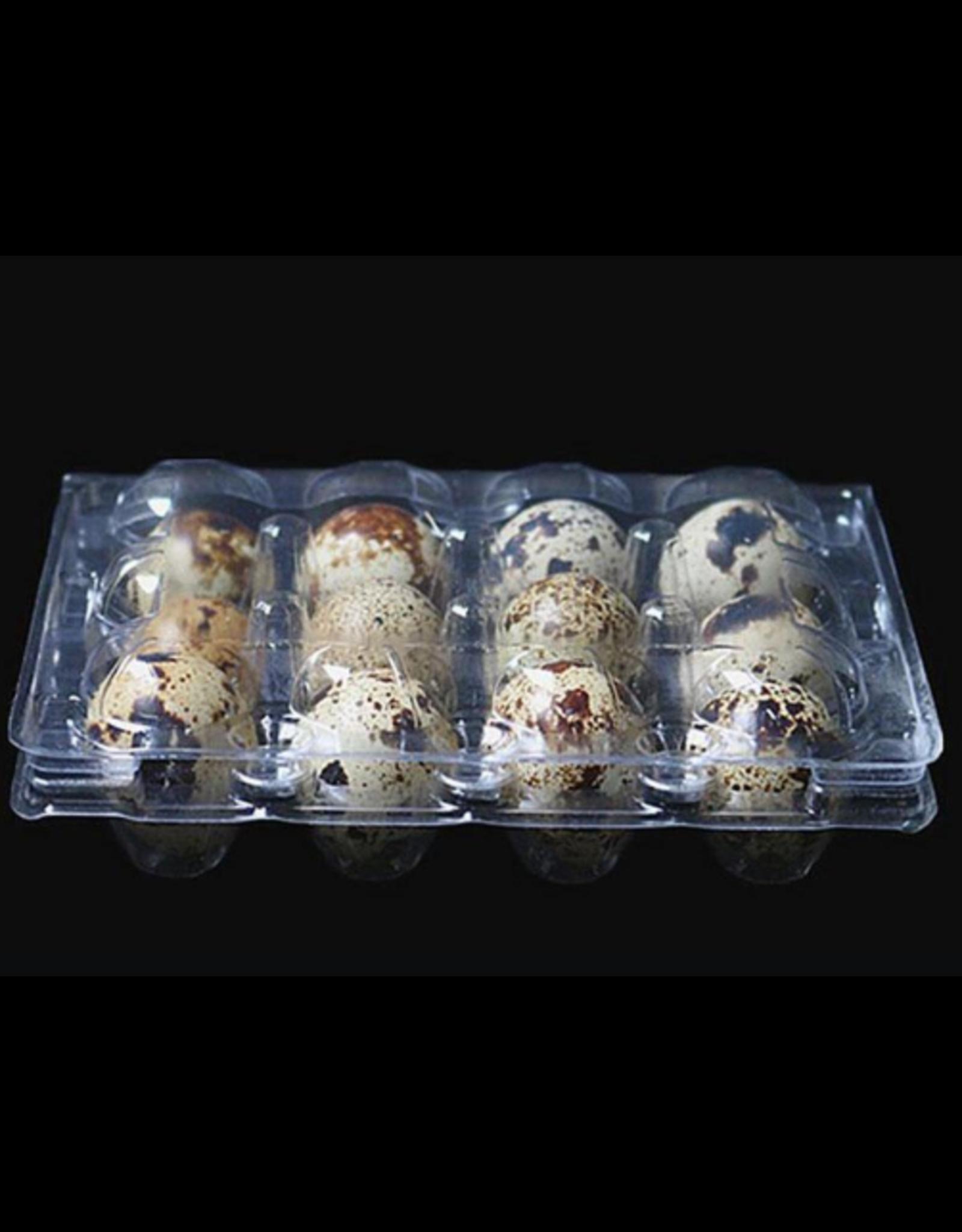 Ma poule express Contenant oeufs de cailles (12 trous)