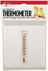 little giant Thermomètre little giant