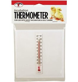 little giant Thermomètre little giant, PE