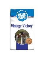 Blue Seal BS Vintage Victory 22.68kg
