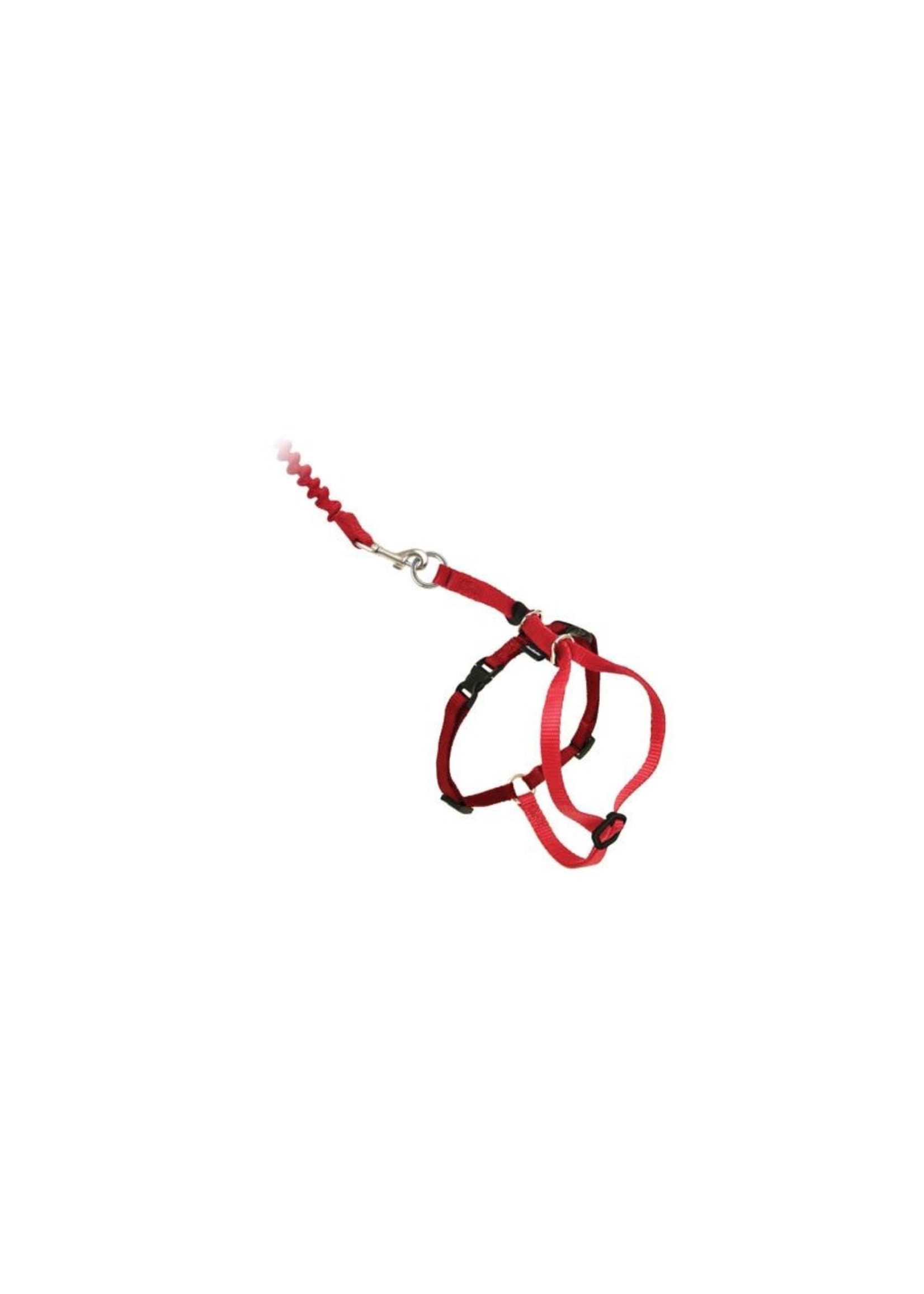 Petsafe Petsafe Côme with me Kitty harnais et laisse bungee pour chat grand rouge