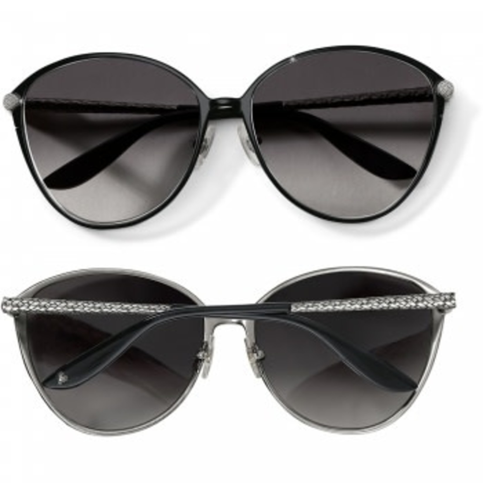Brighton Ferrara Gatta Sunglasses