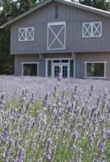 Sonoma Lavender Spa Blankie/Lavender Dot