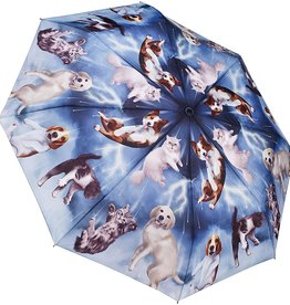 Galleria Enterprises Raining Cats & Dogs Folding Umbrella